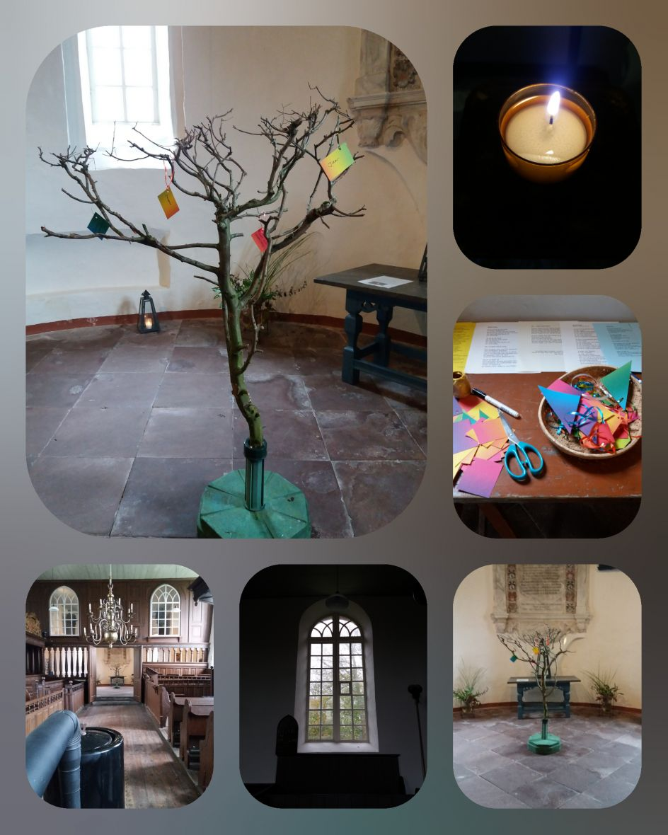 herinneringsboom Mariakerk Oosterwijtwerd